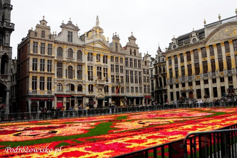 IS_Bruksela (12)