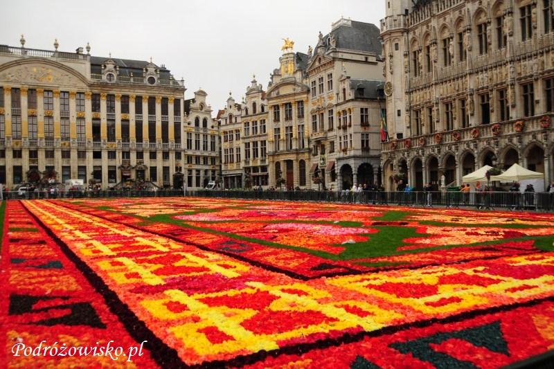IS_Bruksela (18)