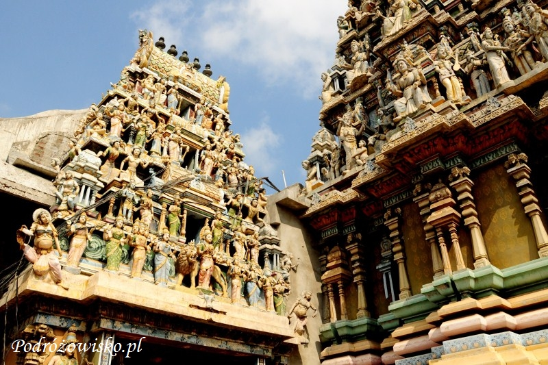 Sri Lanka Trincomalee (23)