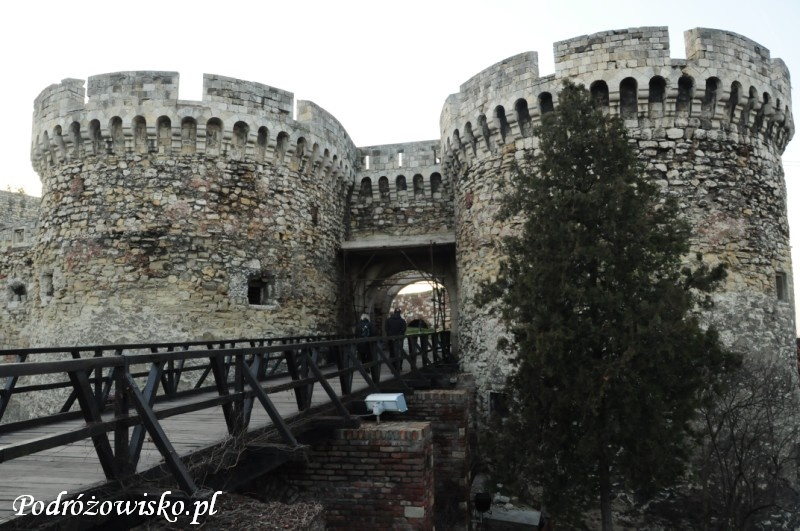 Belgrad 15.01.2015 (13)
