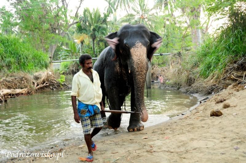 Polonnaruwa (38)