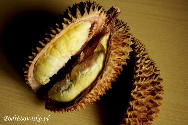Durian (5)