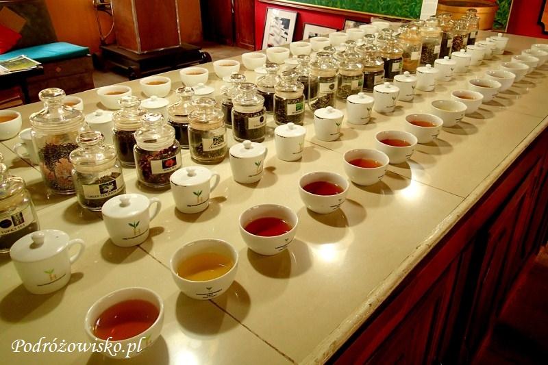 Fabryka herbaty w Ahangama (19)