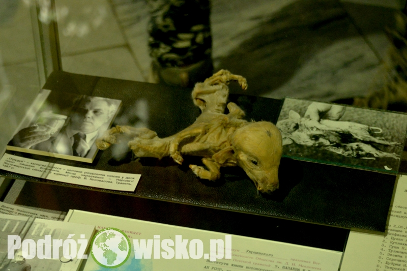 Czarnobyl 2015 dzień 1 (30)