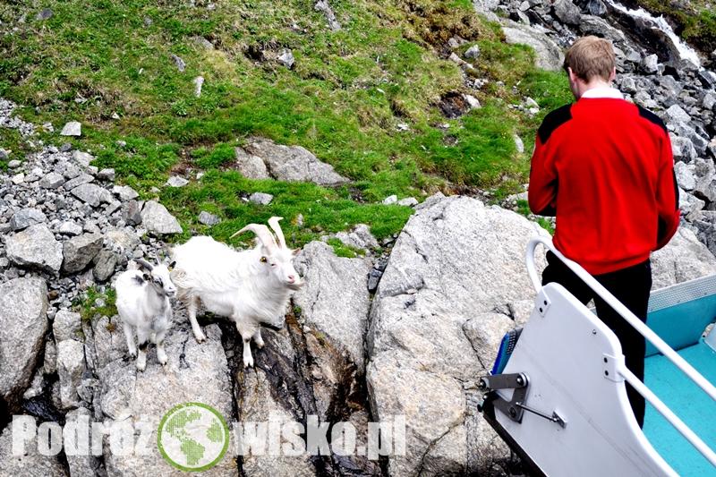 Stavanger 2012 dzień 3 i 4 (8)