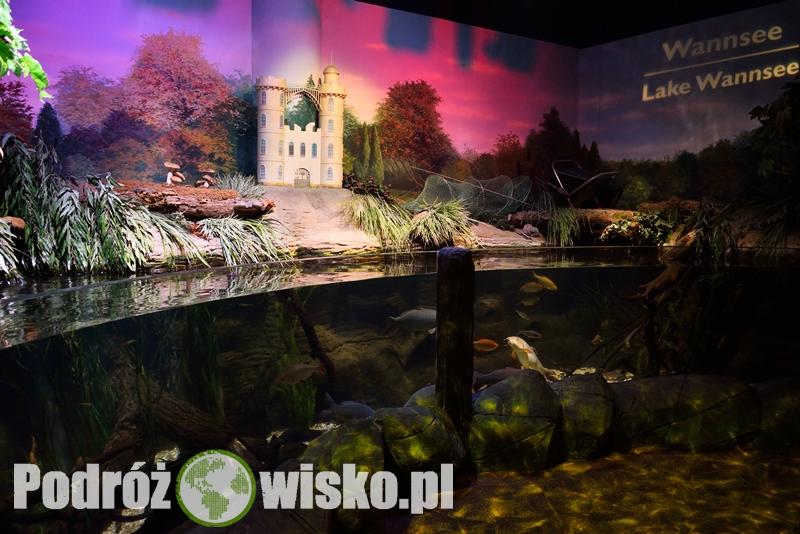 Berlin akwarium (1)