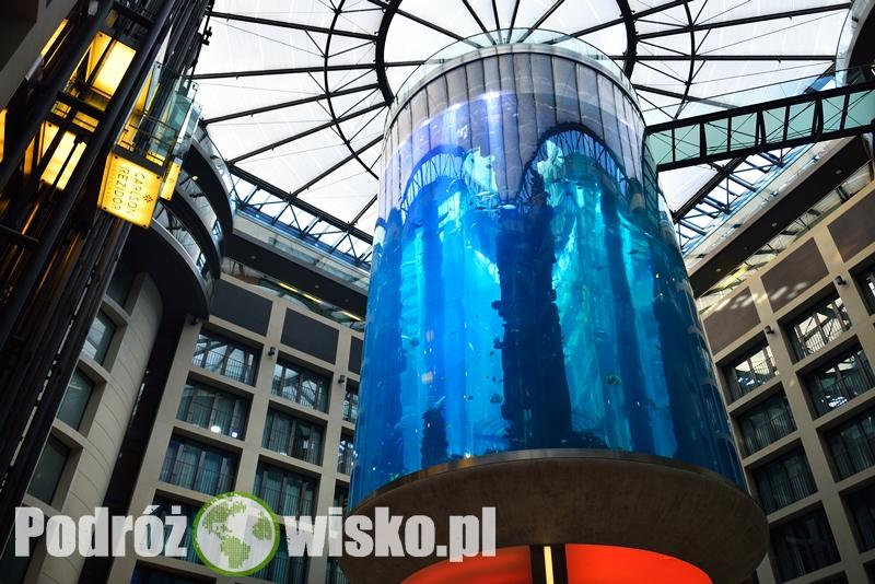 Berlin akwarium (11)