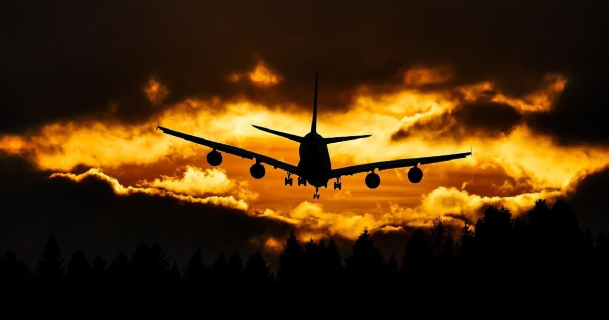 jak przetrwać długi lot
