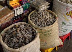 Oman: Atrakcje Salali – kadzidlany suk