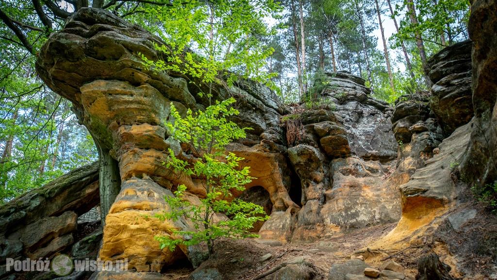 Rezerwat Skały pod Adamowem